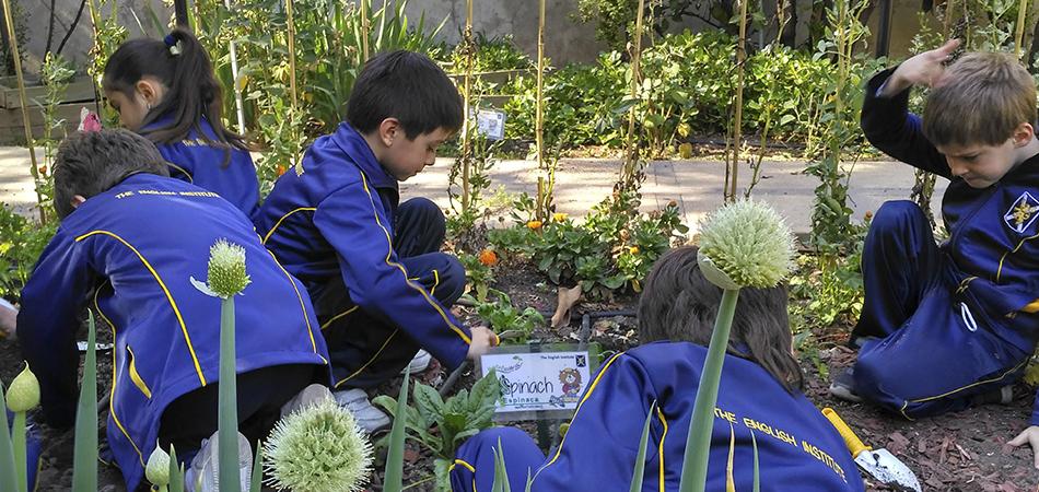 Taller de Educación Ambiental: una semilla para el futuro